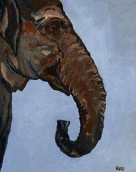 Elephus Maximus Indicus by Randine Dodson