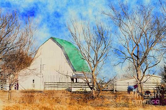 Liane Wright -  Farm - Barn - A Nice Sunny Day