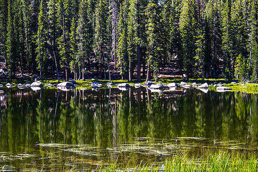 Granite Reflections  by Brian Williamson
