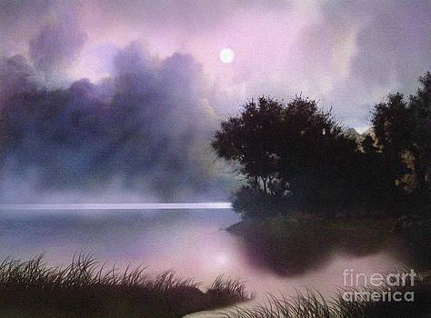 Rain Lake by Robert Foster