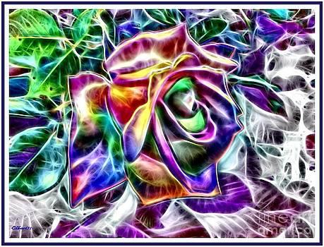 Rose of Many Hues by Gra Howard