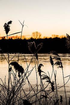 Rosedale Lake III by Theodore Lewis