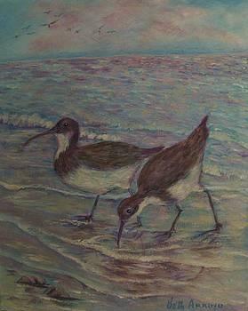 Shore  Birds by Beth Arroyo