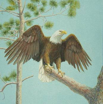 The Eagle Has Landed  by Bonnie Golden