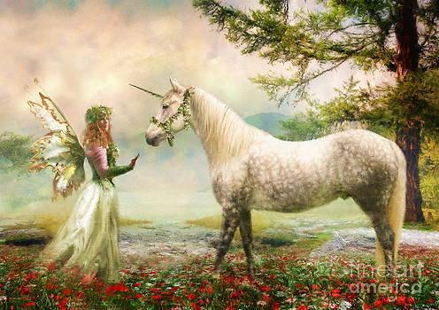 The Unicorn Fairy by Trudi Simmonds