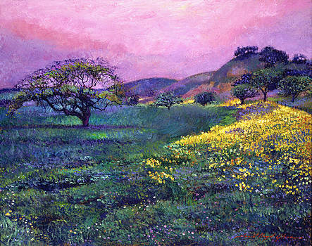 David Lloyd Glover -  WILDFLOWER FIELDS