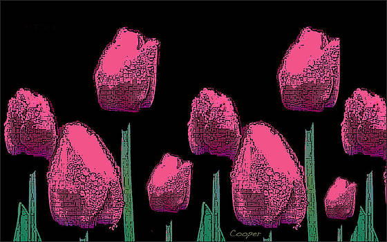 010 Hot Pink Tulips 2A by Peggy Cooper