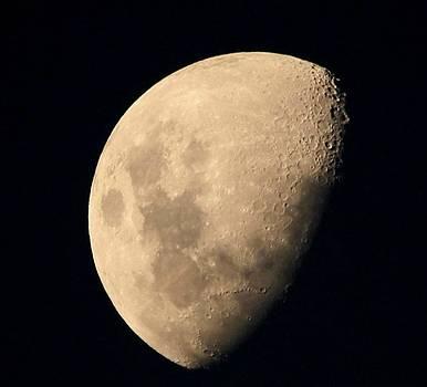 1/2 Moon by Debbie Howden