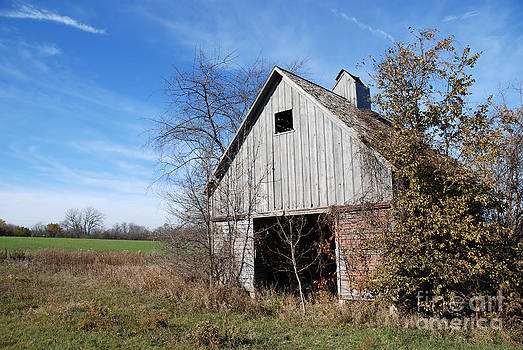 Paul Velgos - An old rundown abandoned wooden barn under a blue sky in midwestern Illinois USA