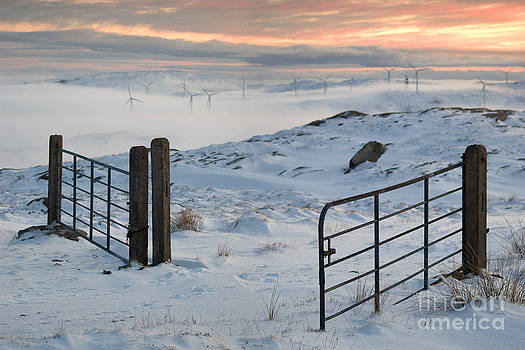 An open and shut gate by Mark Fearon