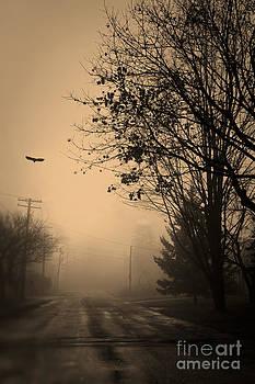 Brenda Giasson - As the Crow Flys