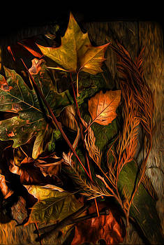 Autumn Colors by Wesley Allen Shaw