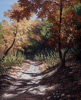 Autumn Trails by Kyle Wood
