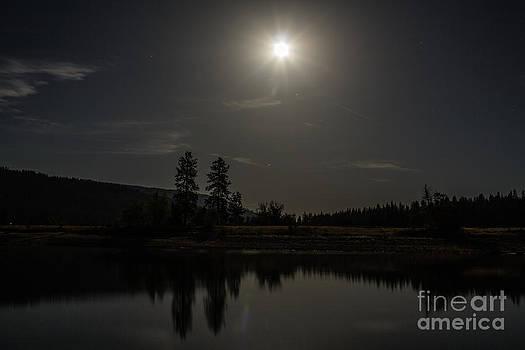 Bass Lake Full Moon by Lisa Anne McKee