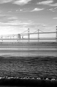 Carolyn Stagger Cokley - bay bridge bw