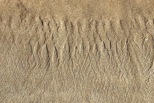 Steven Ralser - Beach Patterns
