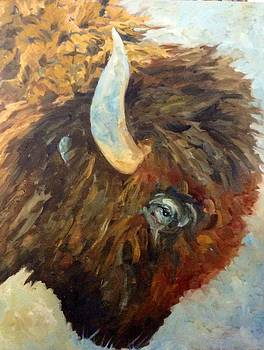 Benton Buffalo by Pat Crowther