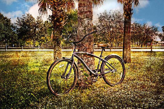 Debra and Dave Vanderlaan - Bicycle in the Park