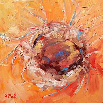 Bird Nest by Suzy Pal Powell