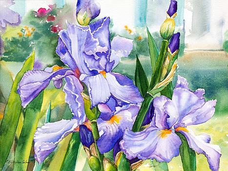 Blue Iris by Patricia Allingham Carlson