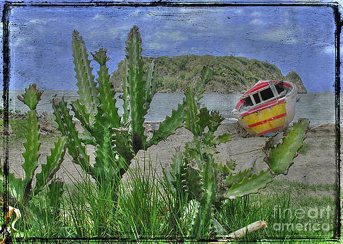 Boat and cactus by Jim Wright