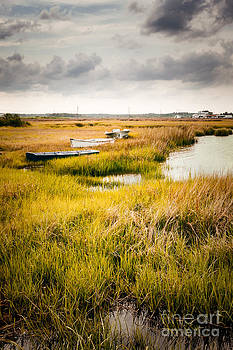 Lisa McStamp - Boats on the Marsh