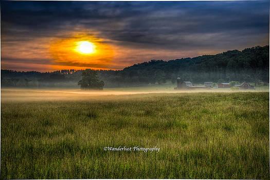 Bohannon Farm  by Paul Herrmann