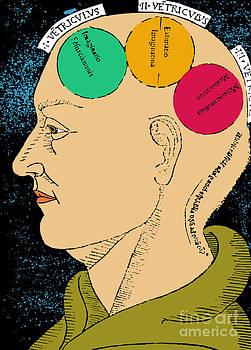 Science Source - Brain Functions Albertus Magnus Woodcut