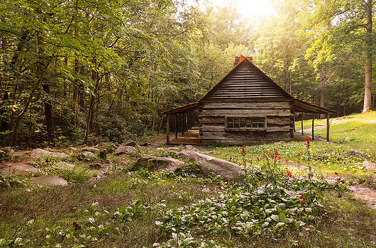 Bud Ogle Cabin by Cindy Haggerty