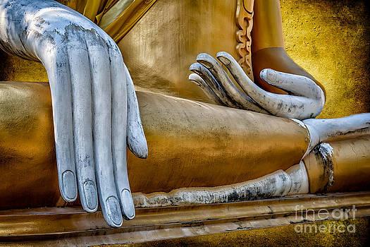 Adrian Evans - Buddha Golden