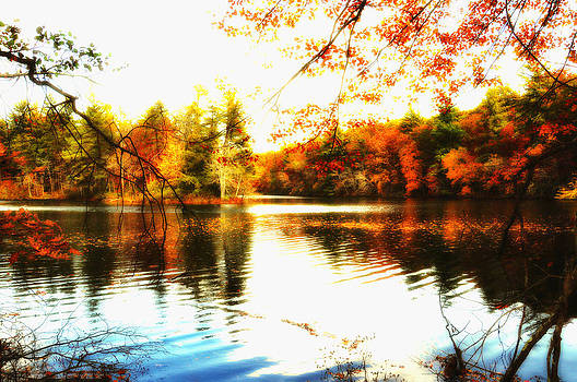 Byrd Lake at Cumberland Mountain State Park by Heather Bridenstine