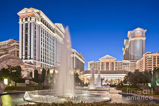 David  Zanzinger - Caesars Palace Hotel Resort Las Vegas Nevada