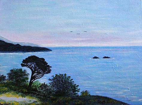 Carmel by the Sea by Julie Lourenco