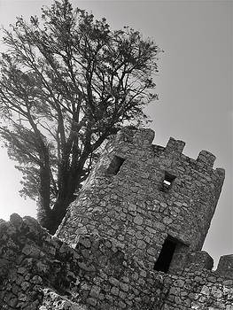 Castle of the Moors by Steven Ottogalli