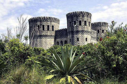 Lynn Palmer - Castle Otttis - Saint Augustine