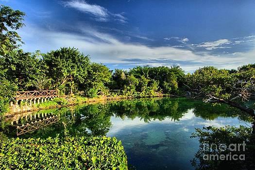 Adam Jewell - Chankanaab Lagoon Reflections