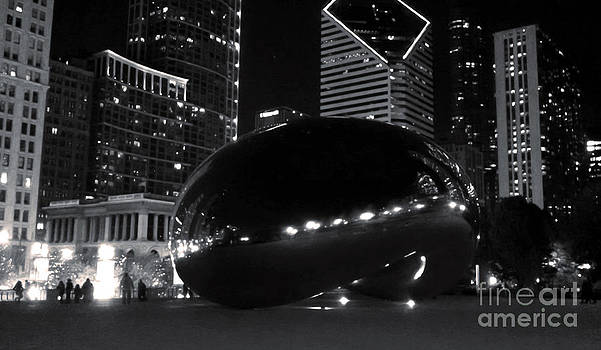 Gregory Dyer - Chicago Cloud Gate