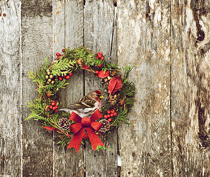 Christmas Wreath. by Kelly Nelson