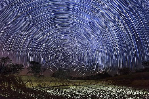 Circular Star Trails Light Up The Sky by Matthew Hood