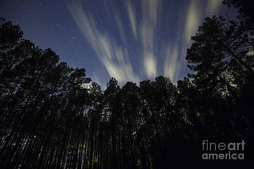 Jonathan Welch - Clouds moving across the night sky