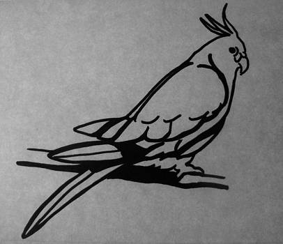Cockatiel by Joann Renner