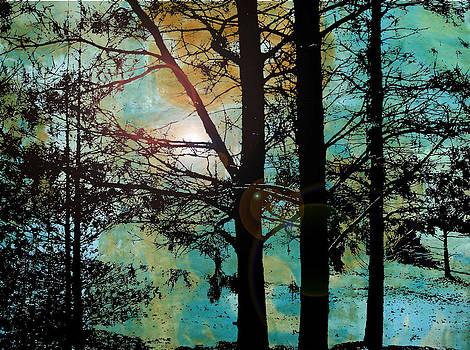 Collage2V5 by Katherine Sands