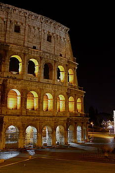 Italian Colosseum Rome Italy by Lisa Anne McKee