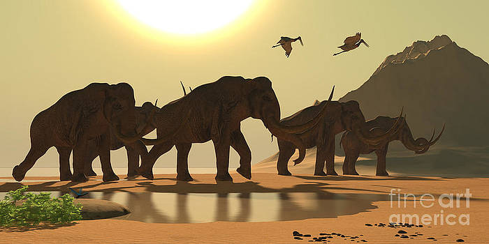Corey Ford - Columbian Mammoth