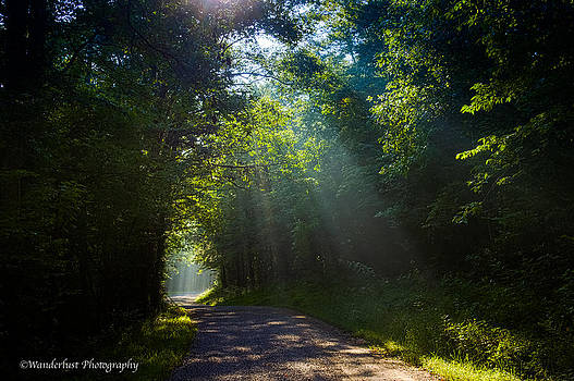 Come To The Light by Paul Herrmann