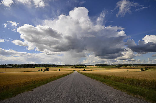 Country road by Conny Sjostrom