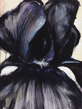 Delilah Black Iris by Jerome Lawrence