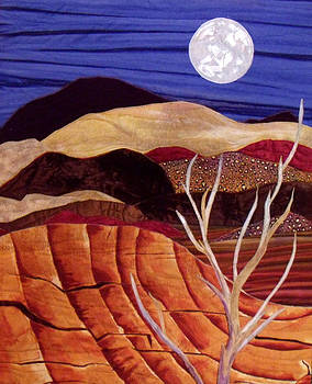Desert Moonrise by Maureen Wartski