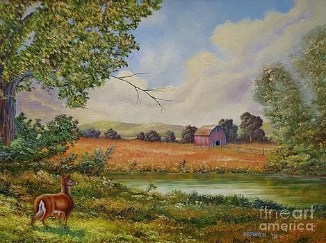 Dog-deer days of summer  by Darren McGrath