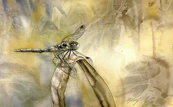 Alfred Ng - dragonfly watercolor